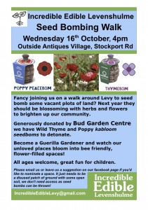 incredible edible levenshulme seed bombing flyer oct13